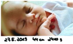 Bild zum Eintrag (1022636-248)
