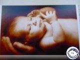 Bild zum Eintrag (919011-248)